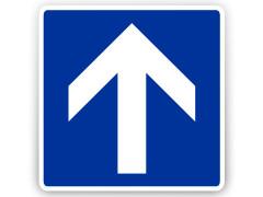 Schild: Einbahnstraße (Richtzeichen)