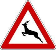 http://www.strassenschilder.de/images/signs/wildwechsel.jpg